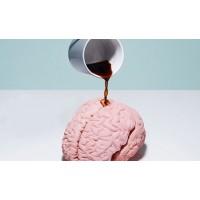 مصرف کافئین باعث تقویت حافظه بلند مدتتان میشود